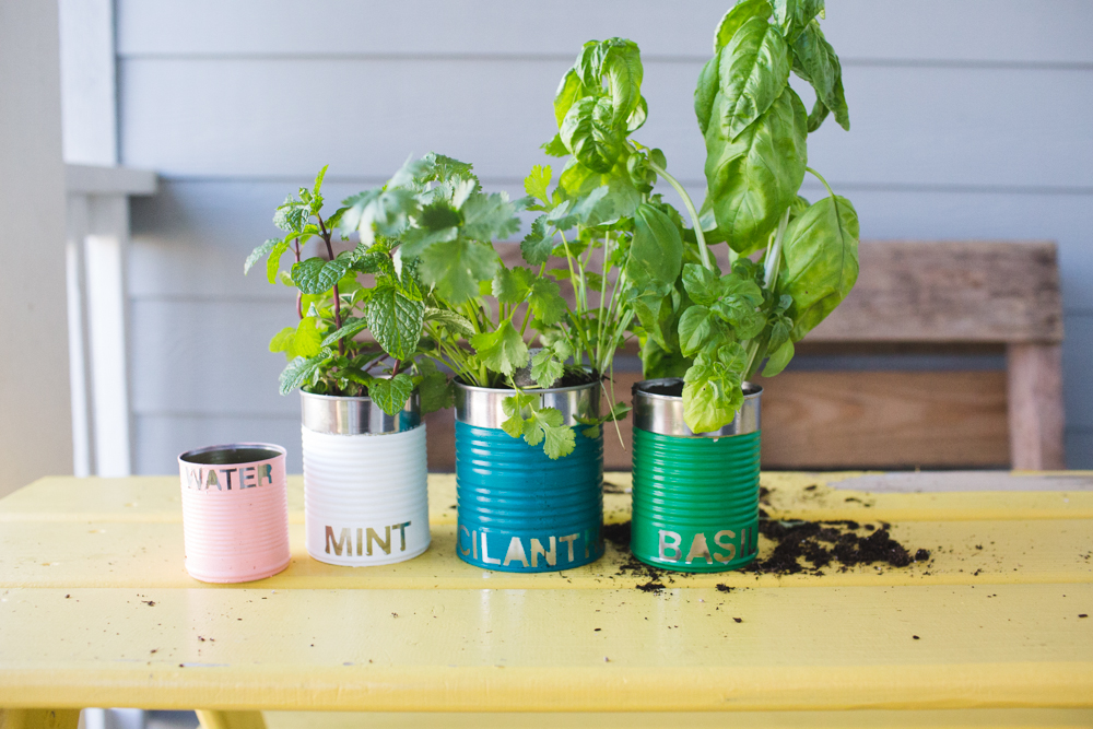 upcycled tin can herb garden-9978