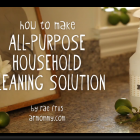 homemade cleaner DIY