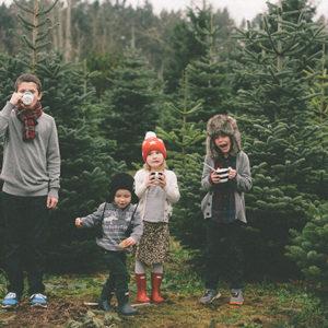 tree-farm-2013-155