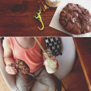 flourless-chocolate-cookies-8