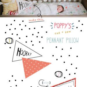 make-hooray-pennant-pillow 2