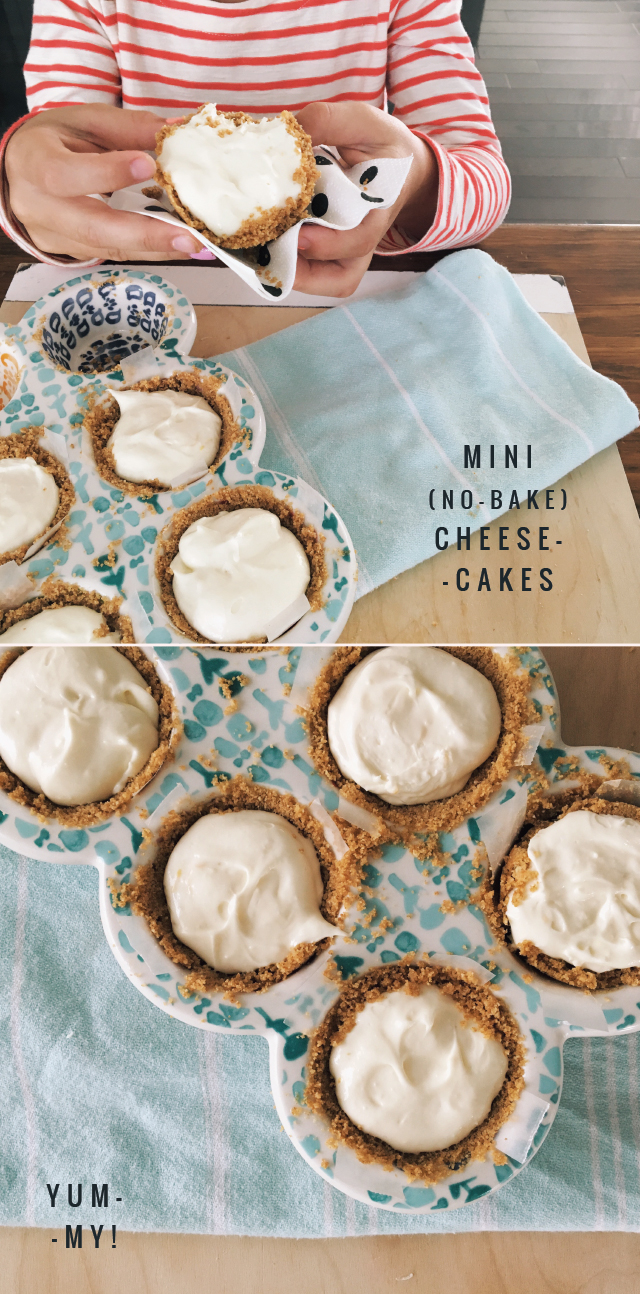 rae-ann-kelly-mini-no-bake-cheesecakes-1